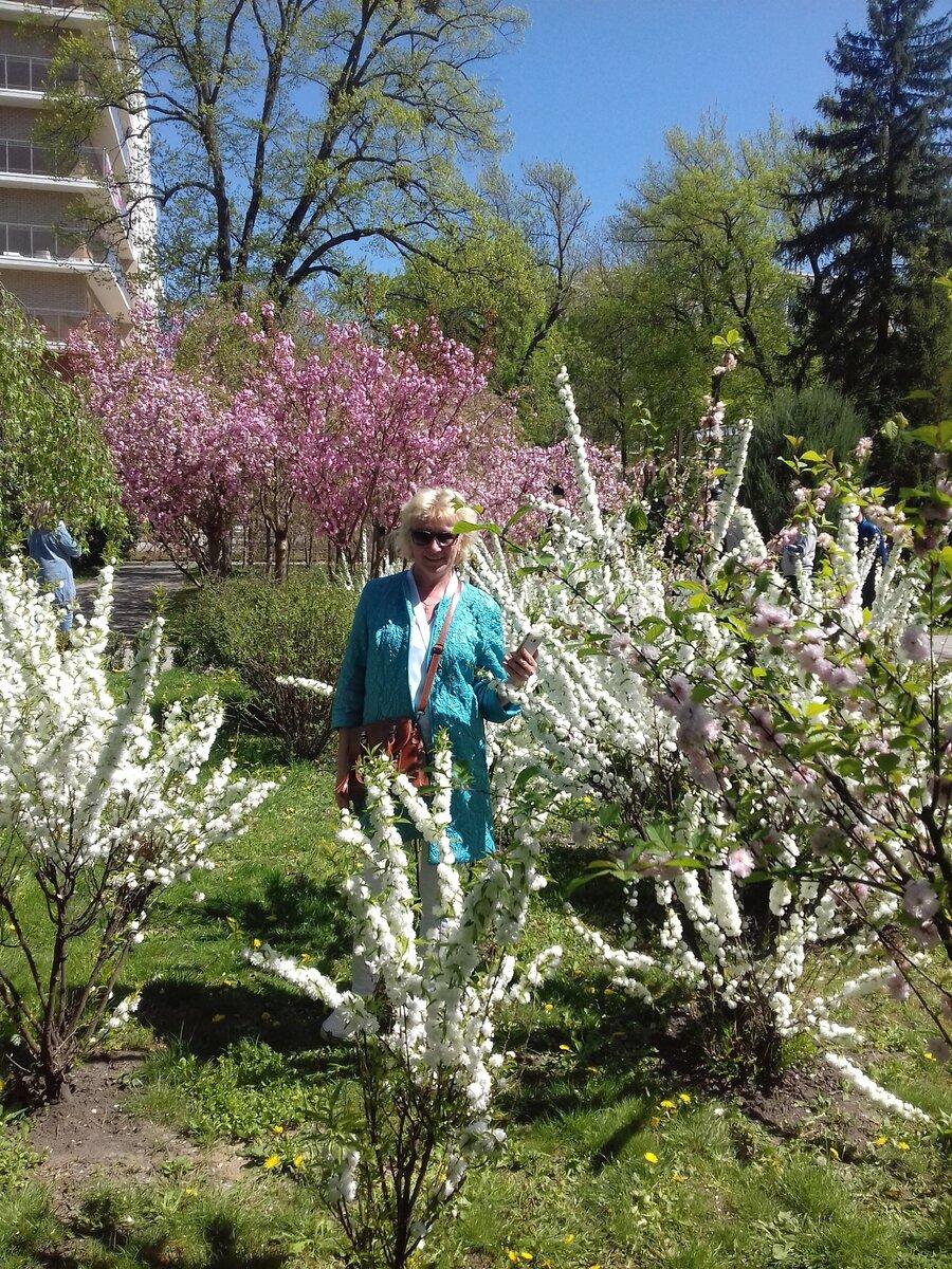 Украшаем жизнь и сад красотой под названием Сперия и Глициния.